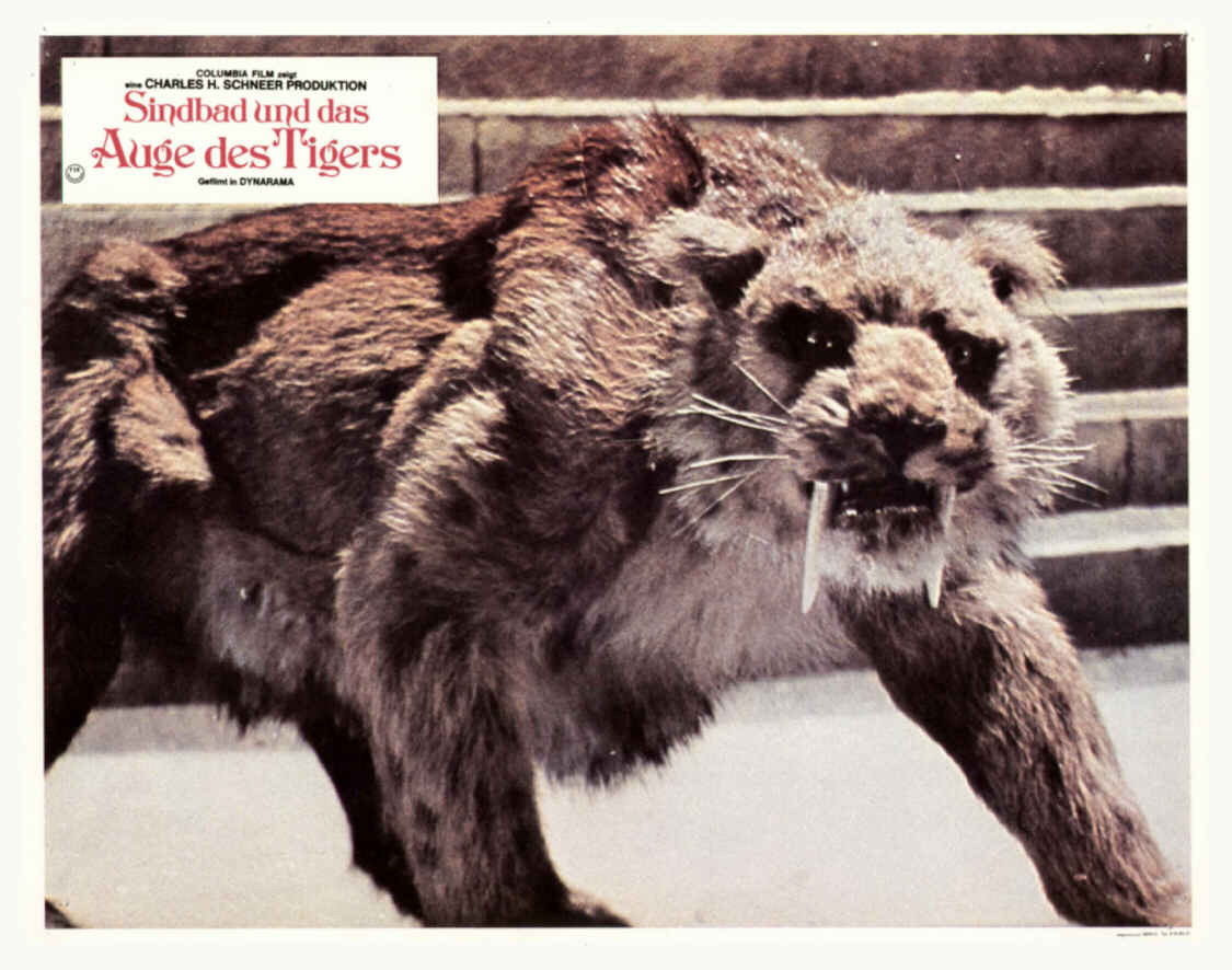 Sindbad Auge Des Tigers